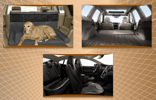 Interior Space of SUV
